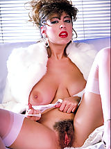 Young Pussy, First ever release of a stunning photo shoot of this legend of the sex vid screen, Christy Canyon..