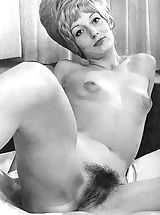 Vintage Pussy: Clasic Bitches