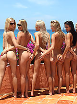 als angels models, passion paradise 09 lots of beach pussy girls